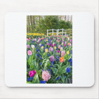 Flowers field with tulips hyacinths and bridge mouse pad