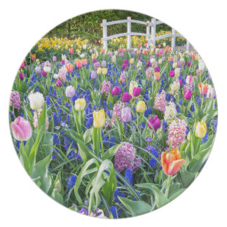 Flowers field with tulips hyacinths and bridge plate