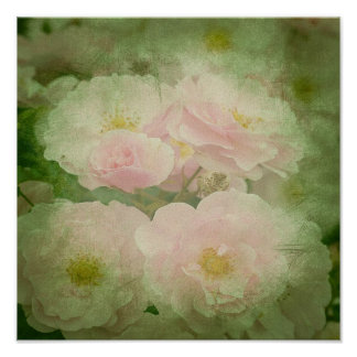 Flowers Floral Blossoms Vines Park Poster