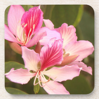 Flowers Floral Garden Blossom Photography Beverage Coasters
