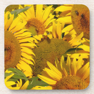 Flowers Floral Garden Blossoms Photography Beverage Coaster