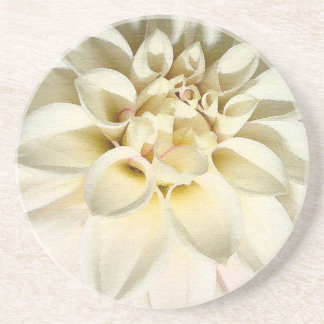 Flowers Floral Garden Blossoms Photography Drink Coaster