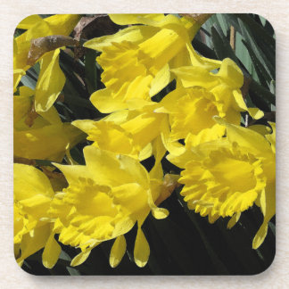 Flowers Floral Garden Photography Beverage Coasters