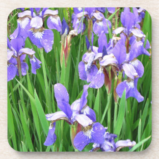 Flowers Floral Garden Photography Coasters