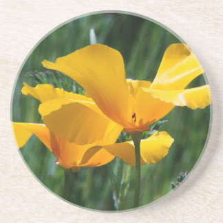 Flowers Floral Garden Photography Drink Coaster