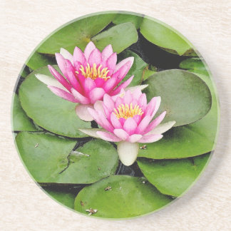Flowers Floral Garden Photography Drink Coasters