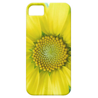 Flowers Floral Garden Photography iPhone 5 Case