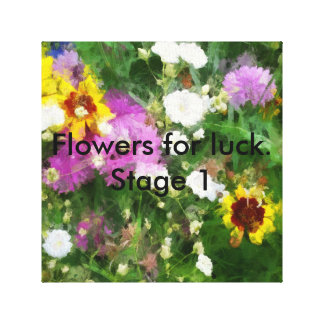 Flowers for luck.Stage1.This picture-give you luck Canvas Print