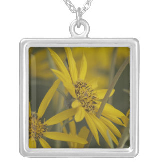 Flowers for You Silver Plated Necklace