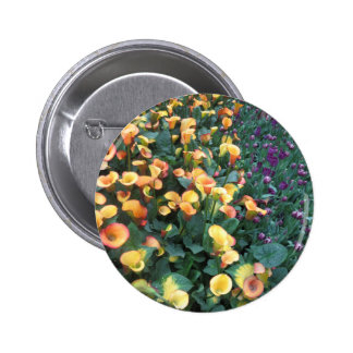 Flowers from Butterfly Garden Las Vegas USA 2 Inch Round Button