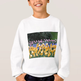 Flowers from Holland, Keukenhof gardens Sweatshirt