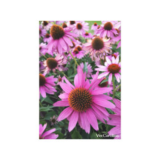 Flowers From Stowe Vermont Canvas Print