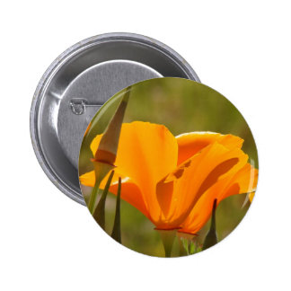 Flowers Garden Floral Photography 2 Inch Round Button