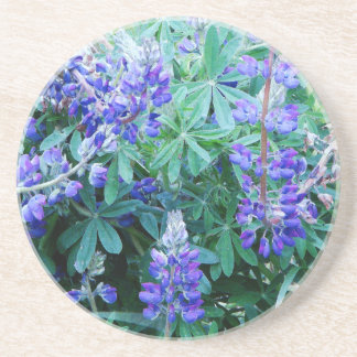 Flowers Garden Floral Photography Beverage Coaster