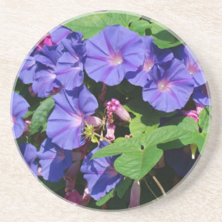 Flowers Garden Floral Photography Coasters