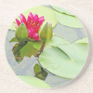Flowers Garden Floral Photography Drink Coaster