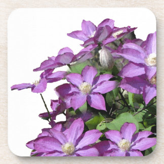 Flowers Garden Floral Photography Drink Coasters