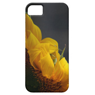 Flowers Garden Floral Photography iPhone 5 Case