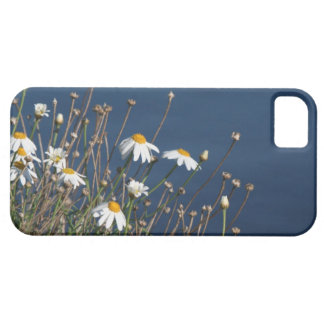 Flowers Garden Floral Photography iPhone 5 Cover