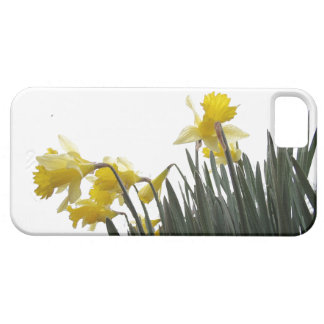 Flowers Garden Floral Photography iPhone 5 Covers