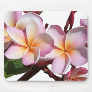 Flowers Garden Floral Photography Mouse Pad