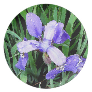 Flowers Garden Floral Photography Plate