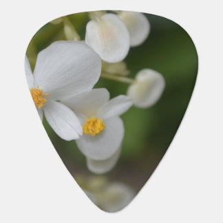 Flowers Guitar Pick
