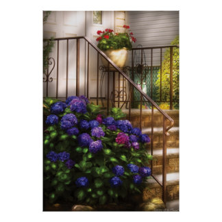 Flowers  - Hydrangia and Geraniums Poster