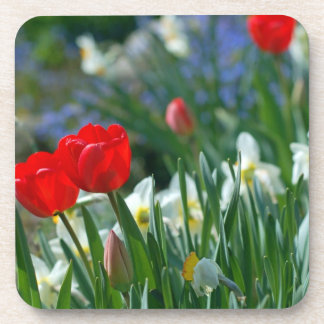 Flowers in May Beverage Coasters