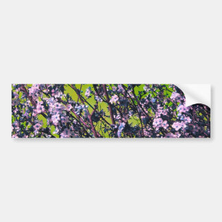 Flowers In the Flowers Bumper Stickers
