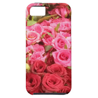 Flowers in the Philippines, pink and red roses Case For The iPhone 5
