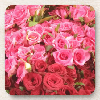 Flowers in the Philippines, pink and red roses Coaster