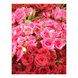 Flowers in the Philippines, pink and red roses Letterhead