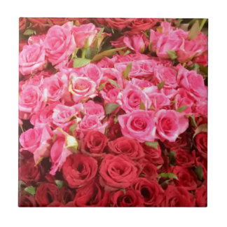 Flowers in the Philippines, pink and red roses Tile