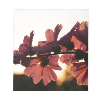 Flowers in the Sunset Notepads