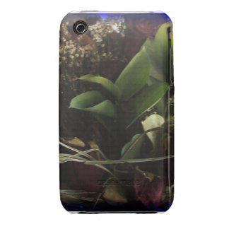 flowers iPhone 3 Case-Mate cases