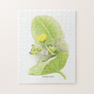 Flowers lilies jigsaw puzzle
