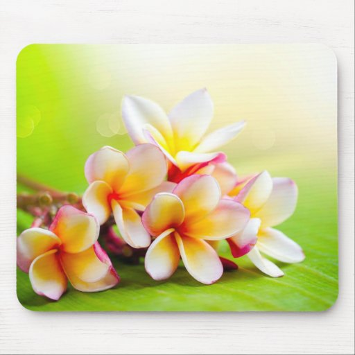 FLOWERS MOUSE PADS