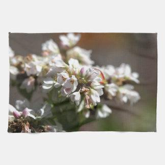 Flowers of a Buckwheat plant (Fagopyrum esculentum Hand Towels