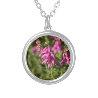 Flowers of a Dorset heath (Erica cilaris) Silver Plated Necklace