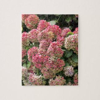 Flowers of a French hydrangea (Hydrangea macrophyl Jigsaw Puzzle
