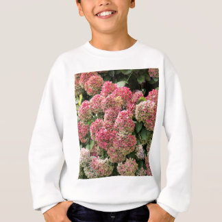 Flowers of a French hydrangea (Hydrangea macrophyl Sweatshirt