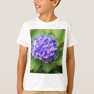 Flowers of a French hydrangea (Hydrangea macrophyl T-Shirt