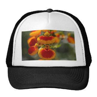 Flowers of a lady's purse flower trucker hat