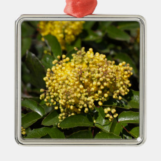 Flowers of a Oregon grape bush Metal Ornament