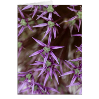 Flowers of a Persian onion Card