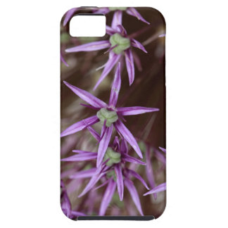 Flowers of a Persian onion Case For The iPhone 5