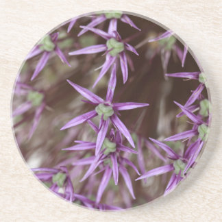Flowers of a Persian onion Drink Coasters