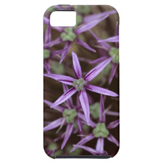 Flowers of a Persian onion iPhone 5 Covers