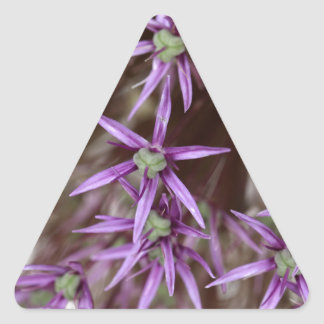 Flowers of a Persian onion Triangle Sticker